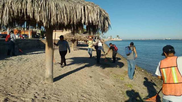 Servicios Públicos limpia playas de La Paz