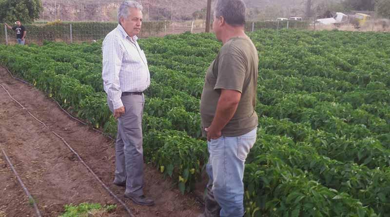 Atiende SEPADA a productores de toda la geografía estatal