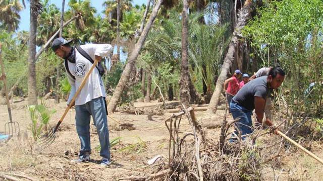 Realizan acciones de limpieza en el Estero Josefino
