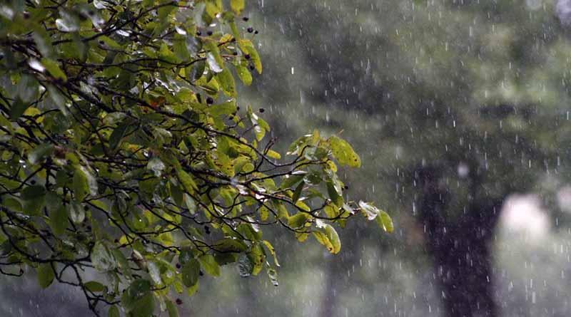 Los remanentes de Danielle provocarán más lluvia en centro del país
