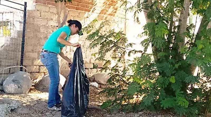 Funcionarios Se Suman a Trabajos de Limpieza