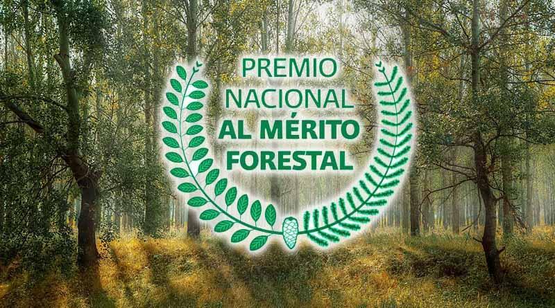 Peña Nieto entrega hoy el Premio Nacional al Mérito Forestal 2016