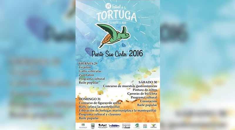 Este fin de semana el Festival de la Tortuga Marina