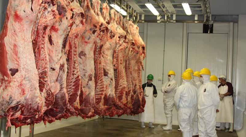 ¿La carne animal podría transmitir o portar COVID-19?