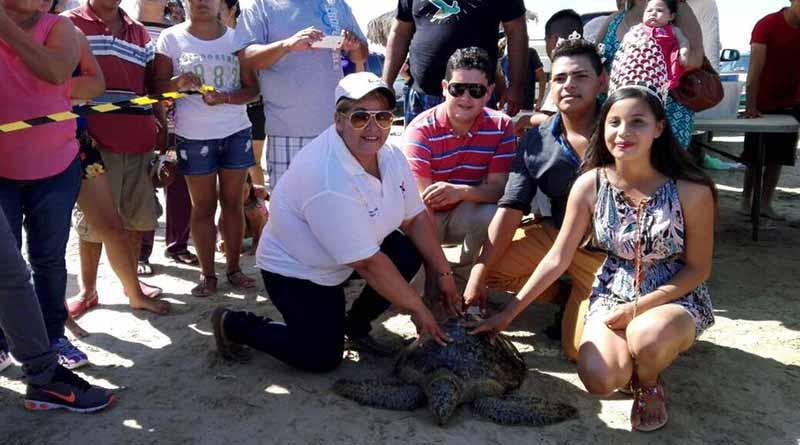 Promueven la conservación del medio ambiente en el Festival de la Tortuga