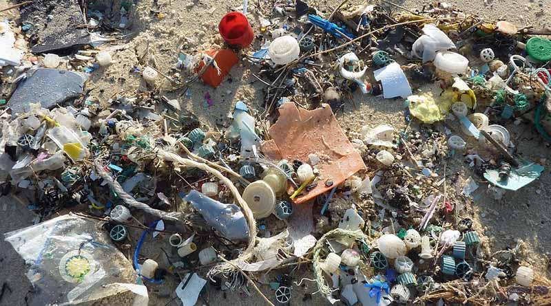 Cuesta la polución 225 mil mdd a la humanidad: Banco Mundial