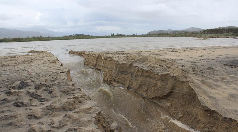 """Realiza ZOFEMAT trabajos de limpieza en las playas del municipio afectadas por """"Newton"""""""