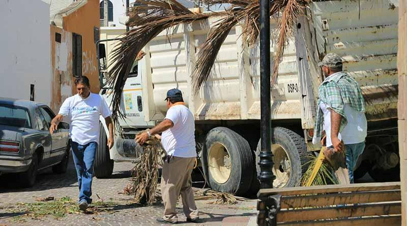"""Recolecta Servicios Públicos 70 toneladas de residuos tras paso de """"Newton"""""""