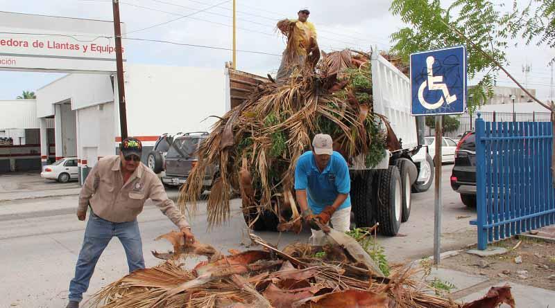 Después de newton, colabora SEPUIT con las labores de limpieza de calles