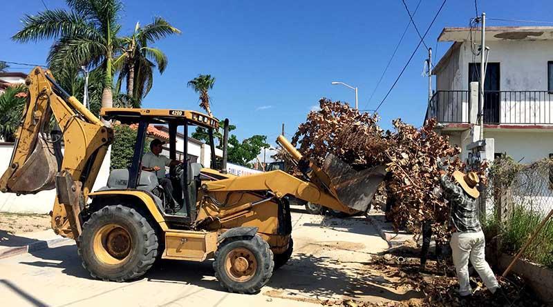 Restablece Gobierno Municipal el servicio de recolección de basura en un 80 por ciento