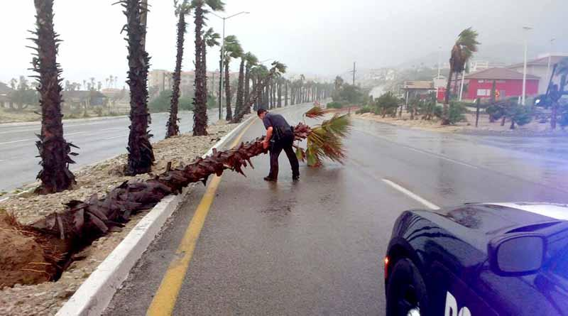 Reporta PF saldo blanco en carreteras tras paso de huracán Newton