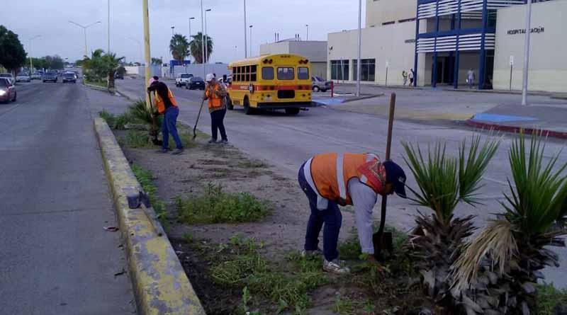 A un año de administración, Servicios Públicos intensifica sus acciones de limpieza, recolección de basura y alumbrado: Martin Guluarte Ceseña