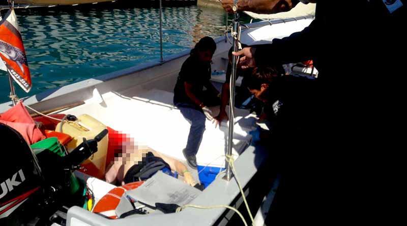 Turista ahogado en La Paz mientras nadaba con tiburones ballena