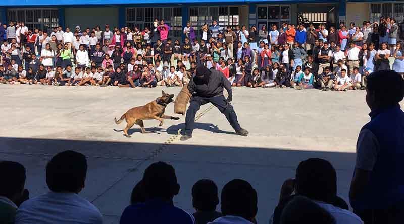 Llevan a secundarias de CSL  exhibición de Grupo Táctico Canino