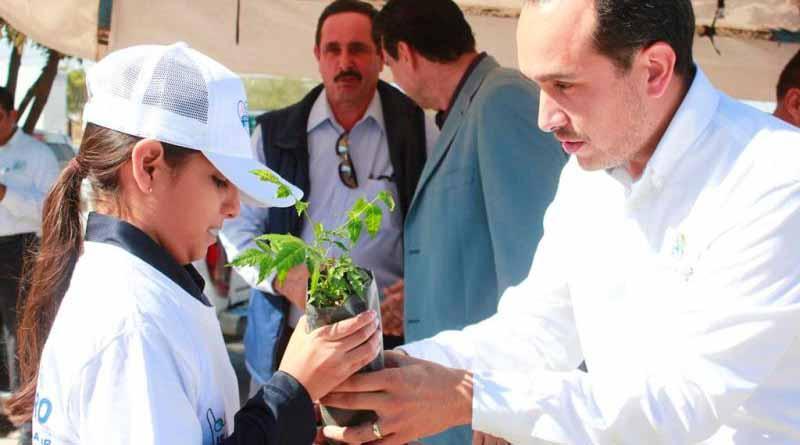 Promueve la SDEMARN programa de reforestación urbana