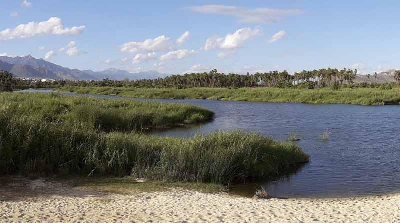 Hoy, suman 23 años del Estero como área de referencia ambiental