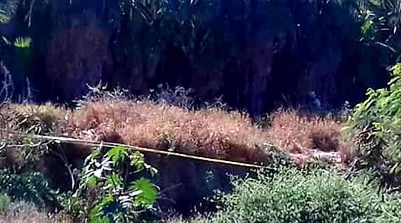 Confirma PGJE localización de cuerpo embolsado en Hojazen de Cabo San Lucas