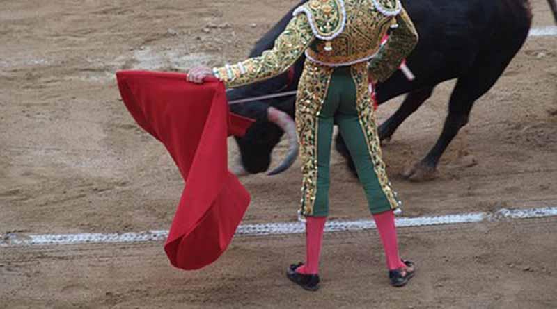 Ponce y Adame triunfan en corrida de plaza de toros La Macarena