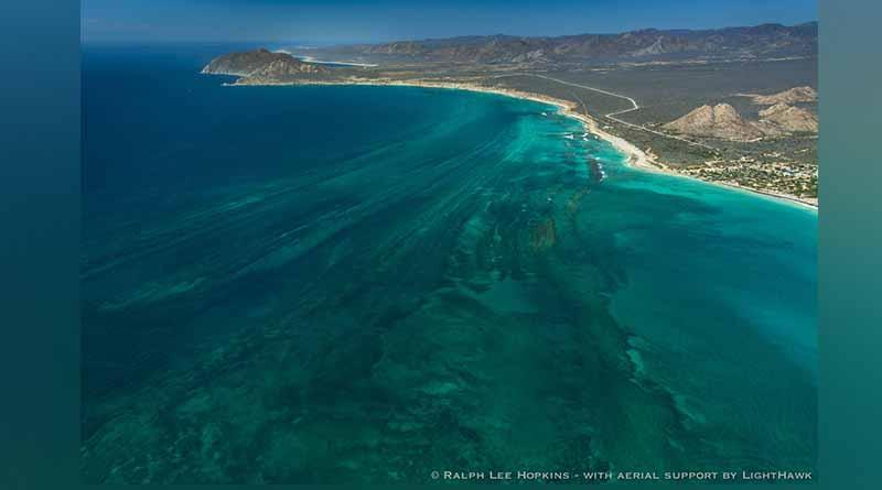 Trabajan autoridades municipales y CONANP en la preservación del parque nacional de Cabo Pulmo