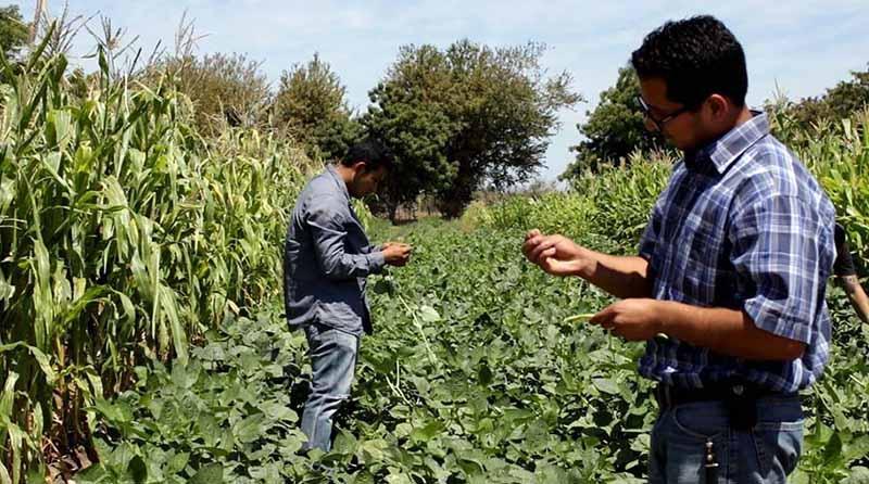 UABCS será sede del Congreso Internacional de Administración de Empresas Agropecuarias en mayo