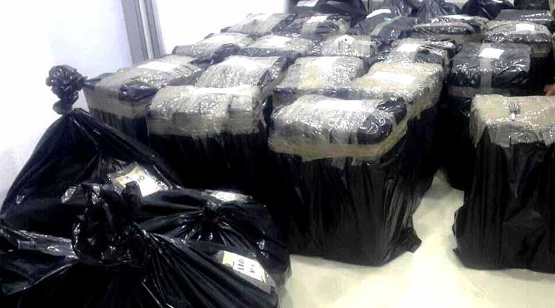 Incauta PGJE 751 kilos de marihuana en cateo en Chula Vista