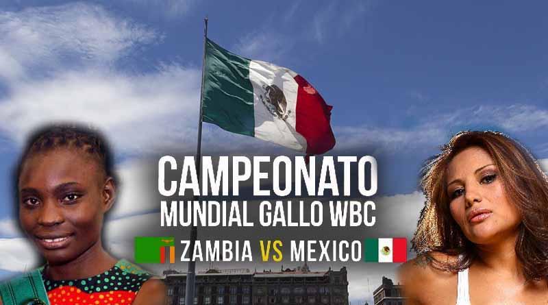 Boxeo femenil encabeza histórica función en Zócalo capitalino