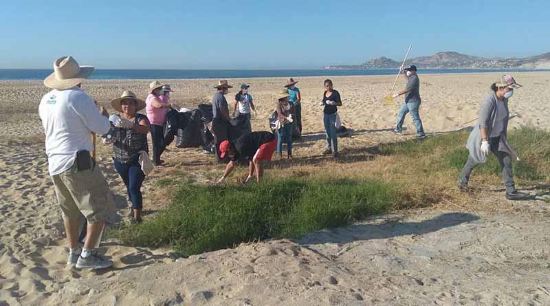 Se realizó jornada de limpieza en playas de la zona hotelera en San José del Cabo