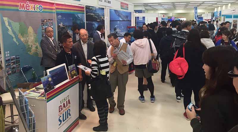 Reconoce Japón a BCS como uno de los mejores destinos para bucear a nivel mundial