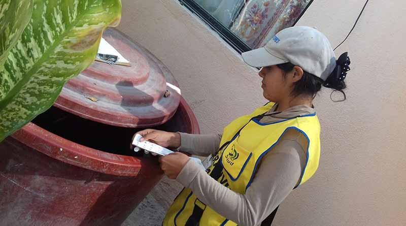 Más de seis mil criaderos de mosco eliminó SSA de BCS durante la 1ª Jornada de lucha contra el Dengue