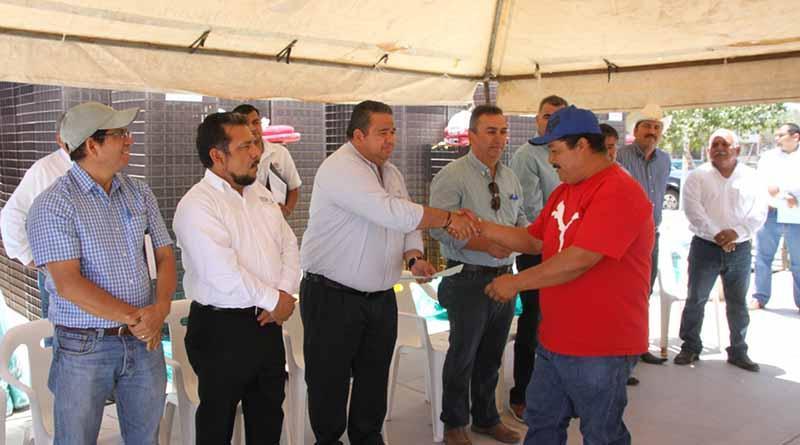 Inician proyecto de repoblamiento de almeja Catarina en López Mateos