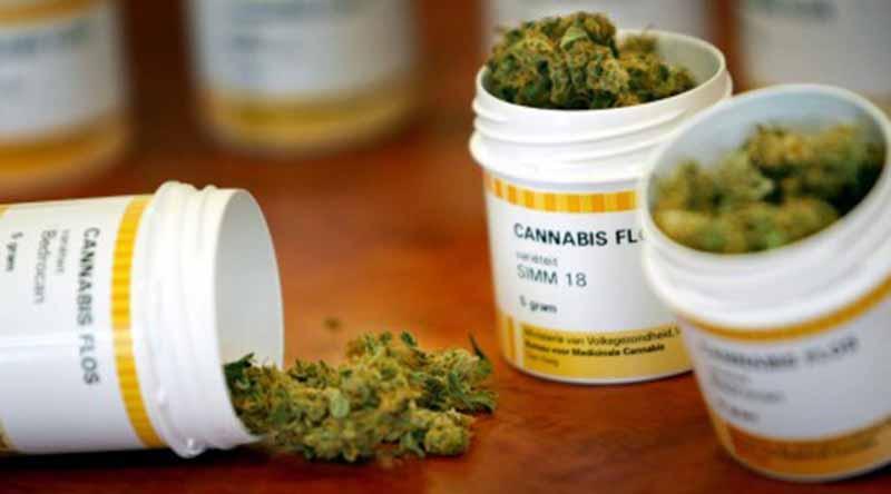 Chile es el primer país latinoamericano en vender fármacos de cannabis