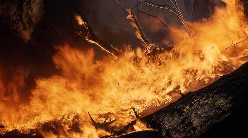Desalojan a diez mil personas en Francia por incendio