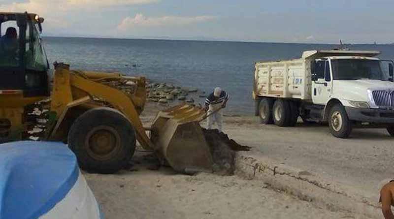 Las playas de La Paz se encuentran en óptimas condiciones para disfrutar en este período vacacional de verano: Martín Guluarte Ceseña