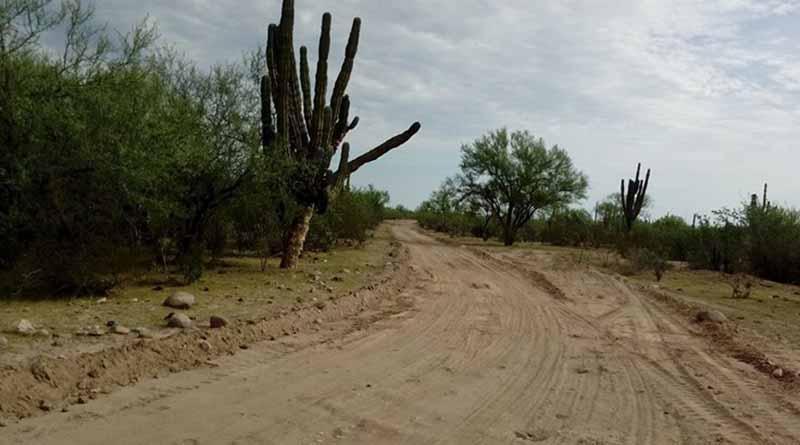 Gobierno Municipal Sigue con Rehabilitación  de Caminos Rurales