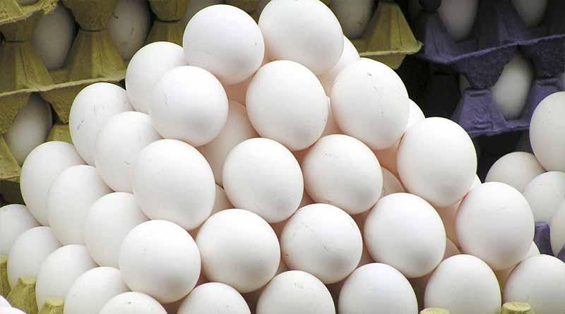 Francia retira de mercados productos fabricados con huevos contaminados