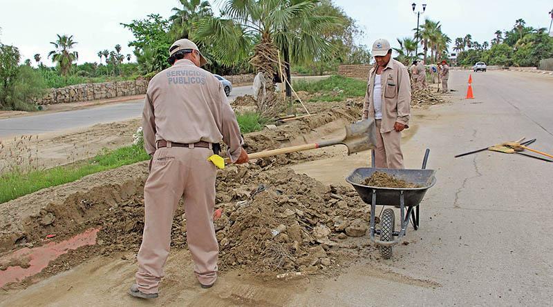 Realiza Servicios Públicos Municipales saneamiento de avenida centenario con barrido manual