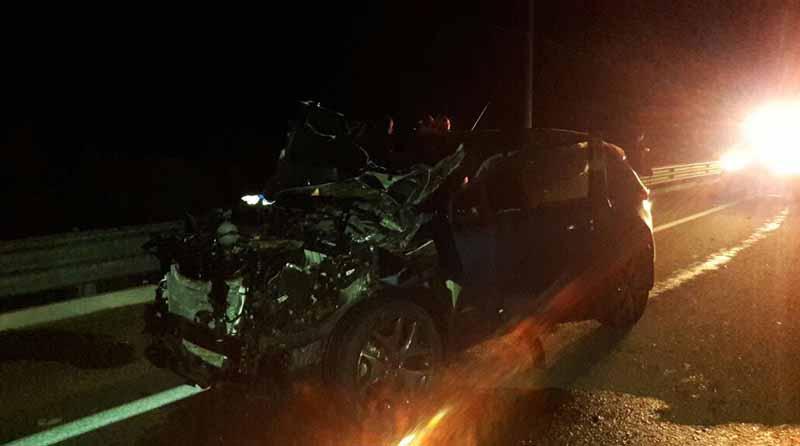 Automóvil choca contra 3 vacas en carretera Todos Santos