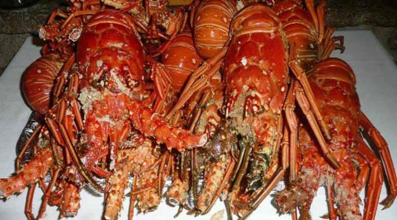 Tras persecución marina detienen  a guateros con 80 kilos de langosta