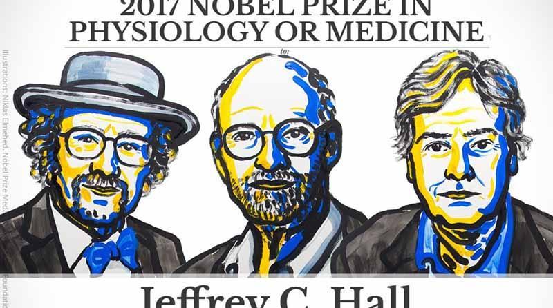 Premio Nobel de Medicina 2017 para descubridores del reloj biológico