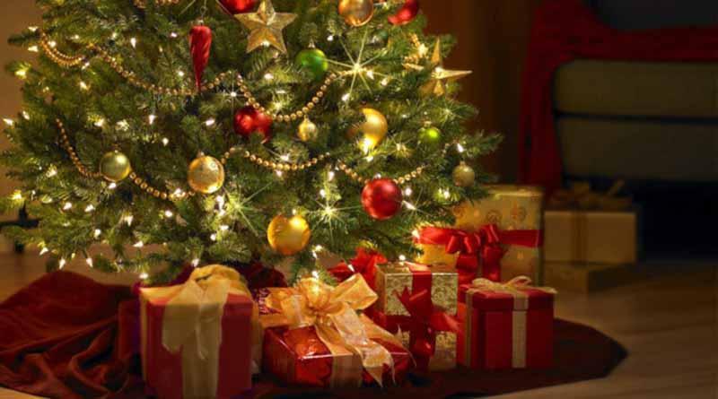 Tradición del Árbol de Navidad nace en Alemania, dicen especialistas