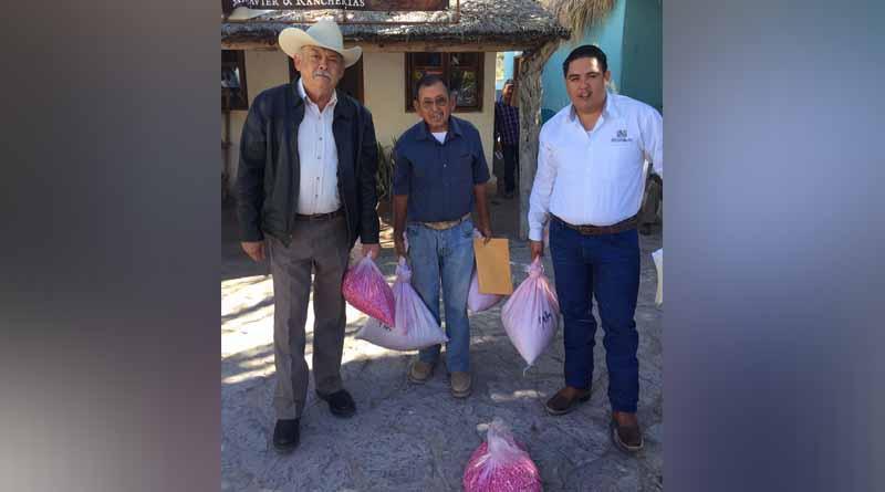 Realiza SEDIF y Protección Civil entrega de apoyos en Mulegé y Loreto