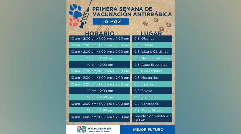 Iniciará en Baja California Sur la Semana de Vacunación Antirrábica Canina y Felina