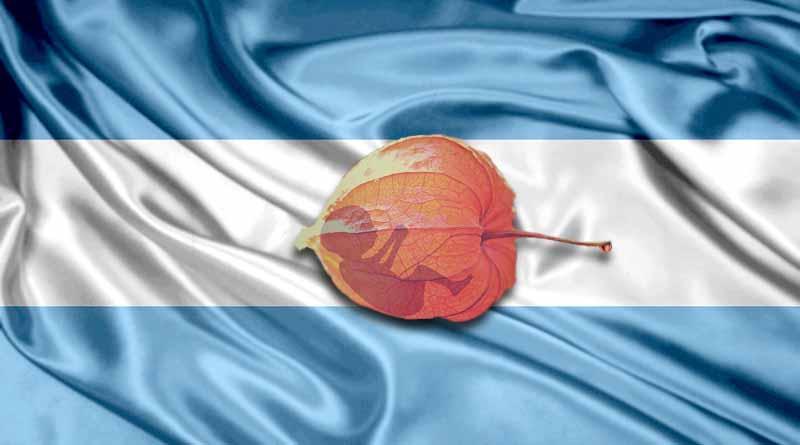 Legalizar aborto, principal demanda en Día de la Mujer en Argentina