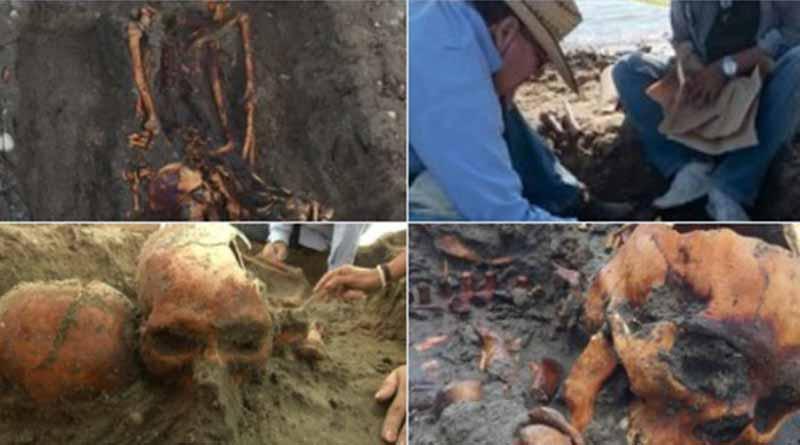 Investigadores de Politécnico hallan restos humanos prehispánicos en BCS