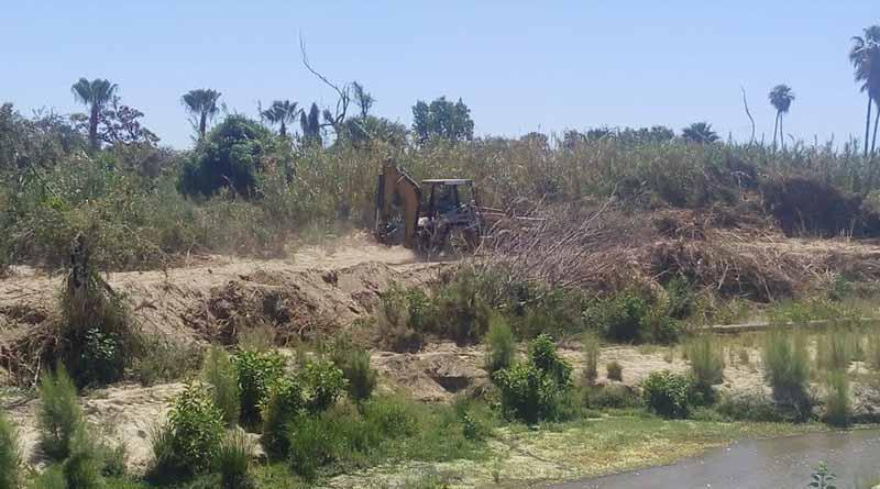 Particular realiza trabajos en zona aledaña al Estero Josefino
