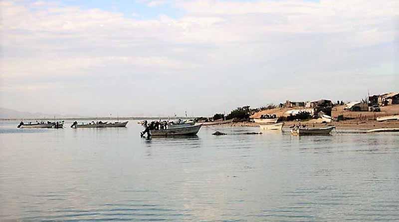 Evalúa subcomité de pesca y acuacultura líneas  de acción del plan estatal de desarrollo