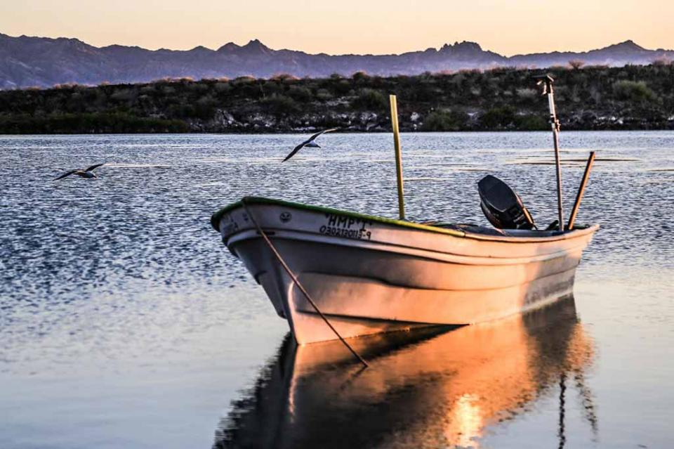 Avanza Gobierno Municipal en la creación de la Dirección Municipal de Pesca