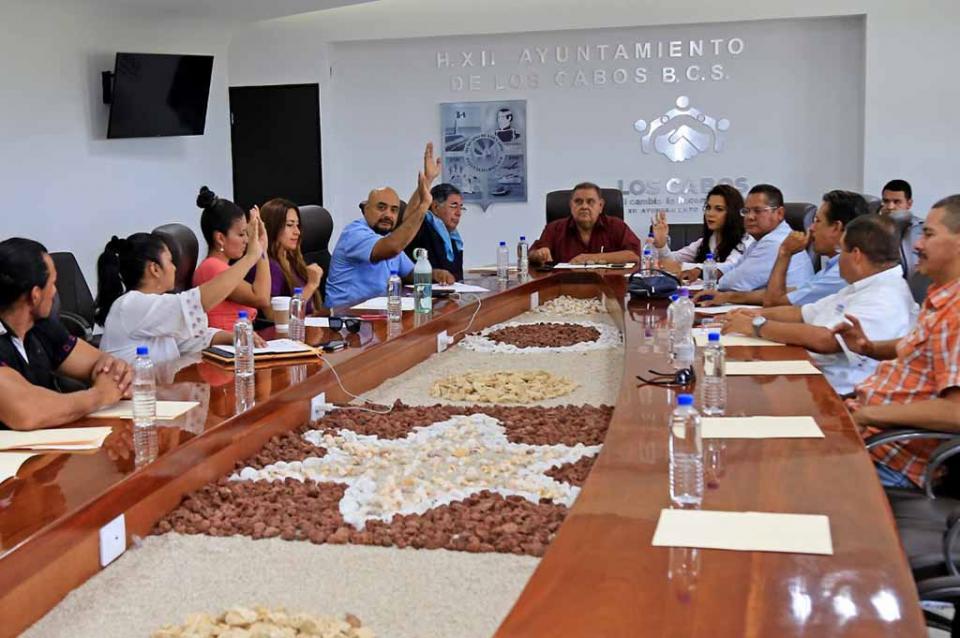 Avanza Comité Pro Animal de Los Cabos, propone campaña de conscientización