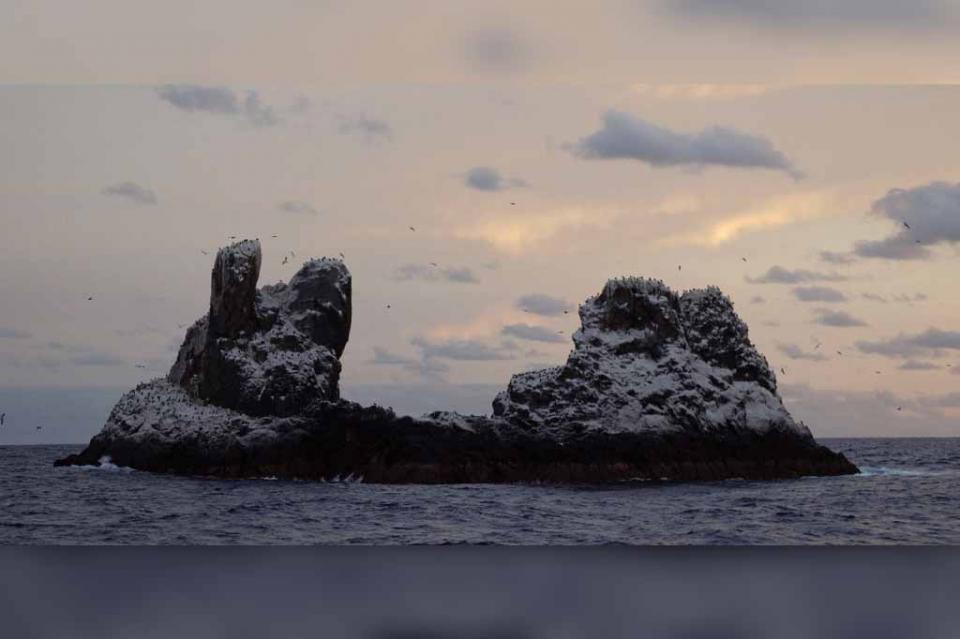 Islas Revillagigedo celebran dos años como Patrimonio Mundial de la Unesco