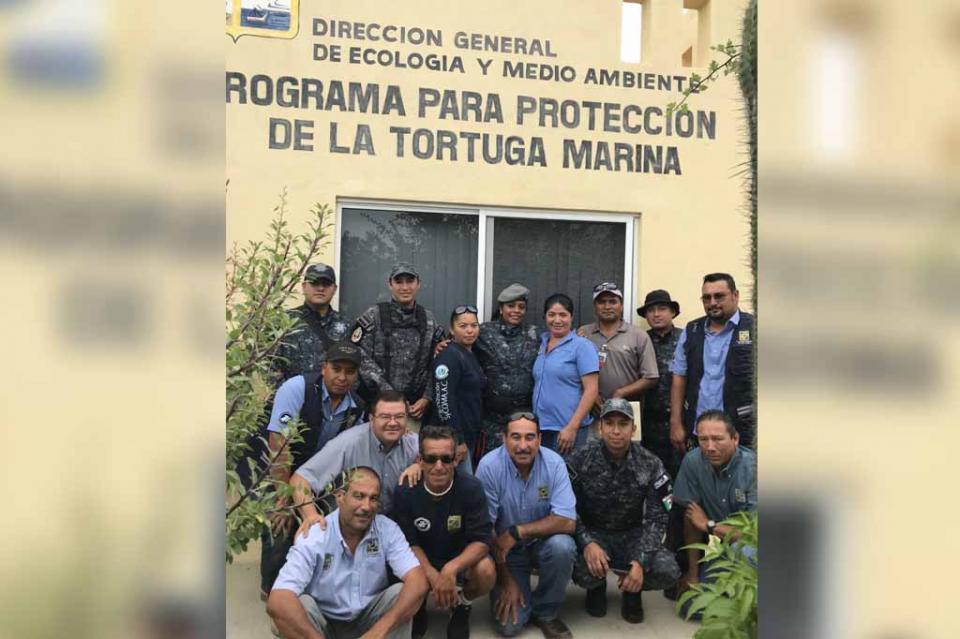 Se suma Gendarmería a los trabajos de protección y vigilancia de la tortuga marina